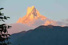 Machhapuchre 6998m (Mabacam) Tags: nepal sunset cloud mountain snow rock evening annapurna himalayas fishtail mountainrange 2015 machhapuchre annapurnahimal