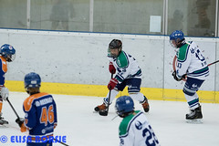DL U12-9128 (elisaborsje) Tags: blauw nederland dordrecht lions nl zuidholland u12 ijshockey proclass dordrechtlionsu12 proclasslions proclasslionsu12blauw