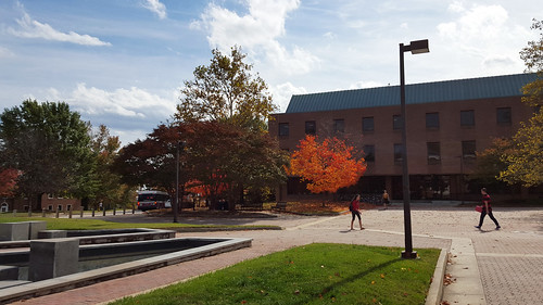Fall on Tawes Plaza