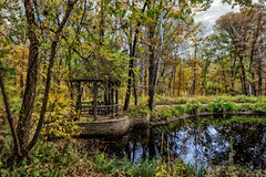 Gazebo by the pond (Bob Sandor 2016) Tags: fallleaves reflection fall nature leaves st clouds canon eos louis day cloudy stlouis reserve clarity ii missouri 24 shaw tse topaz adjust shawnaturereserve cloudyday denoise f35l topazadjust topazdenoise remask topazremask topazclarity tse24f35lii topazphotofxlab photofxlab 5dsr eos5dsr