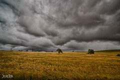 Stormy Friday #2 (Struan Timms Photography) Tags: storm nikon nsw thunderstorm stormfront riverina tokina1116mm28 nikond7000 nikhdreffex nikcollection juneeshire struantimmsphotography juneephotographer