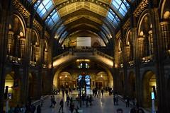 natural history museum (Giramund) Tags: london history museum natural