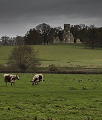 Wimpole Estate Folly (urban_aurora) Tags: nationaltrust folly wimpole cambs