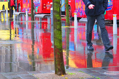 BRY_20130108_IMG_4006_.jpg (stephenbryan825) Tags: trees reflection rain liverpool abstracts wetpavement