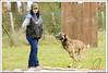 First Von King Von Backdraft RINALDI V  -0815 (Fab Photos Canine et Sportive) Tags: king von first backdraft