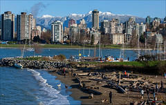 Another Chilly Day At The Dog Park (Clayton Perry Photoworks) Tags: vancouver bc canada fall autumn explorebc explorecanada outdoor snow mountains northshore skyline boat winter haddenpark