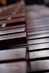 Marimba (Citlali Medal ) Tags: 50mm méxico mexico madera wood photoshopcreativo marimba