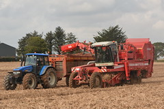 Grimme SF 1700 GBS Self Propelled Potato Harvester filling a Larrington Trailers Guardian Potato Box Loader Trailer drawn by a New Holland TM155 Tractor