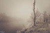 Misty Frozen / Niebla y cencellada (tmuriel67) Tags: atmosphere niebla fog mist frozen mystery river