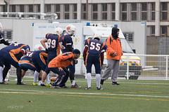 4D3A2917 (marcwalter1501) Tags: minotaure tigres strasbourg footballaméricain football sportdéquipe sport exterieur match nancy