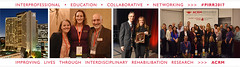 PIRR17_submit_emails_Photo_ribbon_3Jan17_L (ACRM-Rehabilitation) Tags: research scientificresearch rehabilitation pirr acrm conference medicalconference medicaleducation