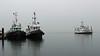 MV Kuper ~ Chemainus (Chris City) Tags: tug tugboat ferry ship dock berth bcferries jonesmarine chemainus