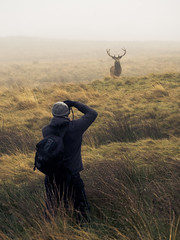 Papping the Pap (Dell's Pics) Tags: olympus omd em5 lyme park national trust deer animal grass hilly fog foggy photographer taking picture