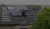 Save more money this tax season! (EliteSynergySolutions) Tags: taxseason renewableenergysource renewable energy sources tax solarsystem solar system federal