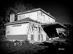 Antiga estação de comboios (verridário) Tags: station mono preto branco noir nero bianco bw wb black hdr old sony monochrome santana negro rail house edificio casa abandoned