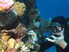 Sasa & Scorpionfish (Lerotic) Tags: scorpionfish uw underwater egypt redsea scuba diving