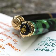 Pelikan M620 Berlin and M600 (kitchener.lord) Tags: pelikan m620 m600 pens macro 2017 xf27 cap ornament ink diamine darkgreen blazeorange
