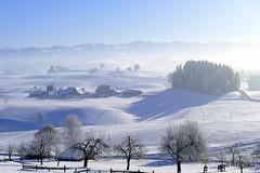 Nüechtere - Affoltern im Emmental (HITSCHKO) Tags: schweiz suisse svizzera svizra switzerland bern emmental affoltern affolternimemmental junkholz bauernhof landwirtschaft bauernhaus winter sonnenaufgang