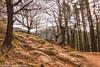 Mount Adarra - Starting the path (sejunco) Tags: 2017 monte adarra
