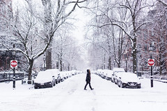 Snow Day Strideby ((Jessica)) Tags: strideby snowday snow marlboroughstreet street signs donotenter red white figure silhouette walking stride trees winter snowstorm fallingsnow season seasonal seasons cold freezing boston backbay newengland massachusetts sony sonya6000 35mm
