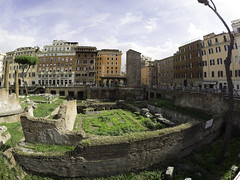 Torre Argentina (C@mera M@n) Tags: city italy rome ruins urban ancientrome ancienthistory archaeology outdoors vacation