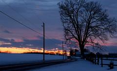Wintry Setting (J_Dubb94) Tags: sunset winter horizon tree highway fenceline dusk clouds