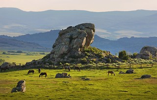 Wyoming Upland Hunting, Fishing, Horseback & Spa 21