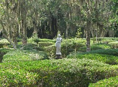 Magnolia Plantation-Charleston (JJG53) Tags: trees statue gardens southcarolina charleston thesouth