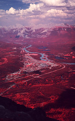 img024 (Photo Taker #9) Tags: infrared orangefilter colorinfraredfilm aerochrome