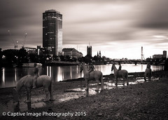 The Rising Tide - Sunrise (_Captive Image_) Tags: sculpture london thames river children underwater tide southbank arrogant future politicians vauxhall nineelms businessmen suited fossilfuels therisingtide jasondecairestaylor captiveimagephotography