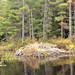 Black Pond Beaver Lodge - W C Slattery