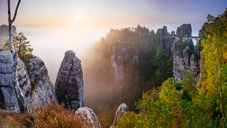 Bastei in Morning Fog