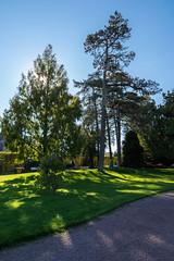 Jardin Dumaine (cédricmerceron) Tags: autumn france automne nikon jardin tamron parc vendée paysdelaloire tamron1750mm luçon jardindumaine nikond7200