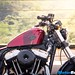 2016-Harley-Davidson-Forty-Eight-13