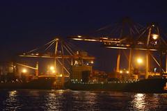 58_Crane harbour at night (fosa.) Tags: sea night port harbor harbour crane taiwan container kaohsiung nightscene containercrane portofkaohsiung