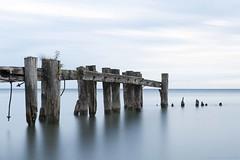 pastel blue (martinaschneider) Tags: wood longexposure summer lake ontario water sunrise pier lakeontario fiftypoint