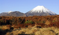 tongariro-new-zealand-mt-ngauruhoe