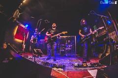 GUE_4076 (Guenda-Deda) Tags: music rock concert nirvana live milano grunge rocknroll shame rho seraphiceyes