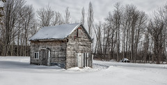 Winter Cabin (Brian Rome Photography) Tags: travel snow ontario cold abandoned freezing urbanexploration urbex utdoors