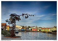 novembre 2015 chateau d oléron 15 (fan17600) Tags: mer océan iledoleron charentemaritime beteau cabanehuitre
