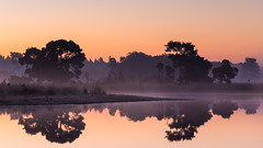 Strabrechtse Heide 246 (Deshamer) Tags: netherlands sunrise nl noordbrabant strabrechtseheide 2015 sterksel
