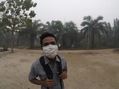 SNV and Prosympac visit Jambi, October 2015 (everyoneisgone) Tags: sumatra haze smoke farmer sustainable palmoil jambi aulia akvo snv smallholder auliarahman muarojambi akvoflow prosympac