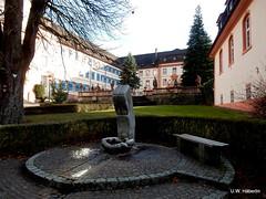 DSCN0804 (derudo) Tags: südschwarzwald stohren münstertal vogesenblick blickindierheinebene