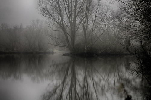 Singleton Lake in Mist