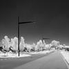 south-morang-2229-ps-w (pw-pix) Tags: street streets road asphalt bitumen kerb concrete lines markings signs lights poles trees grass houses urban suburban hills edgeofthesuburbs expandingintofarmland urbansprawl car vehicle shadows sunny summer hot sky ir infrared bw blackandwhite irconvertednikon1v1 720nmir grangedrive cornergrangedriveandglenorchyway southmorang northernsuburbs outernorth melbourne victoria australia