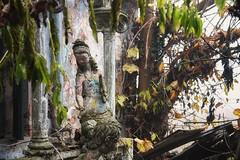 Favola di Venezia (www.nicolabertellotti.com) Tags: decay decadenza urbex abbandono abandoned abbandonato abbandonata forgotten venezia venice corto maltese hugo pratt rovina ruin ruins