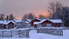 Old cabins in Church Town, Gammelstad Sweden (Helen Lundberg Photography) Tags: sweden swedish lulea gammelstad winter snow churchtown kyrkstaden kyrkbyn fence redhouse red unesco worldheritage landmark