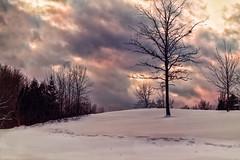 Winter evening sky (elenashen5) Tags: winter snow clouds