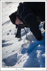 _DMC8066 (duncen.mcleod) Tags: ardenne d4 ncn ncnuitje otus1455 sneeuw wit nnikon