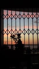 Balcony (rjmiller1807) Tags: balcony trellidoor 2017 capetown westbeach apartment flat view window slidingdoors silhouette olympus olympustough january home southafrica pink clouds sky flowers sunset night dusk sundown